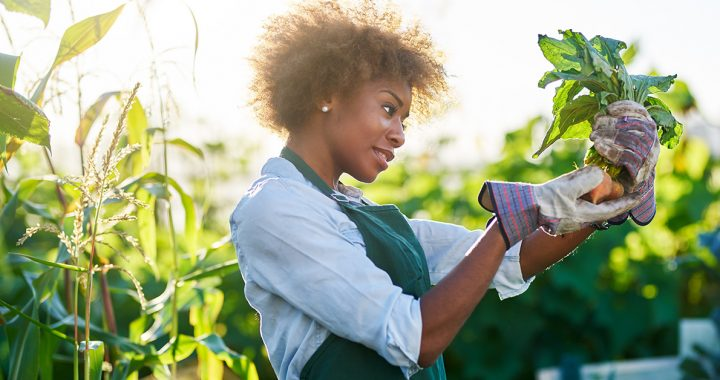 woman home gardening in virginia and south carolina