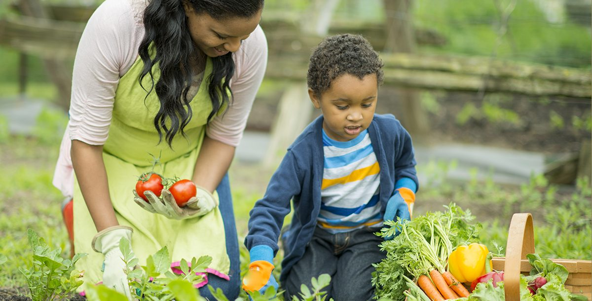 A mother and son planting a victory garden in their backyard.